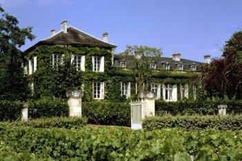 talbot Chateau Talbot St. Julien Bordeaux Wine, Complete Guide