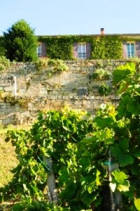 Tertre Daugay 200x300 Chateau Tertre Daugay St. Emilion Bordeaux Wine, Complete Guide