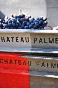 2010 Palmer Baskets 199x300 2010 Chateau Palmer Harvest Thomas Duroux Interview