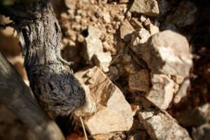 Hermitage Soil 300x200 Hermitage Wine Complete Guide to all the Best Wines, Vintages, Vineyards