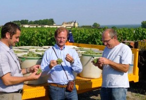 2011 Chateau Yquem with Pierre Lurton 300x205 2011 Bordeaux Harvest Starts Early, Replay of 1893?