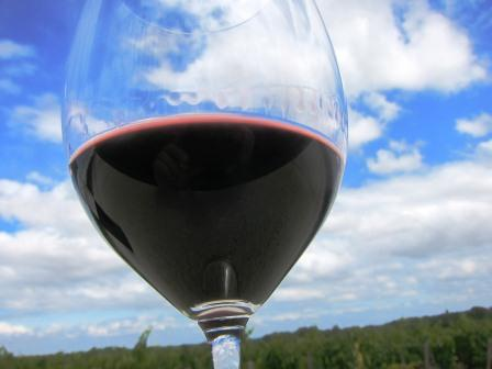 2011 Bordeaux Tasting Notes Buying Guide for 350 Best Wines