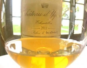 2011 Yquem1 300x234 2011 Chateau dYquem Sweet Bordeaux Wine of the Vintage