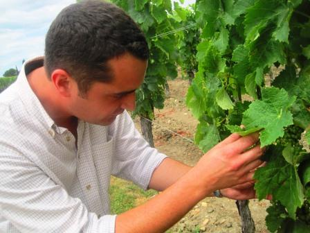2012 Petrus Harvest in Full Bloom in Pomerol Christian Moueix Happy