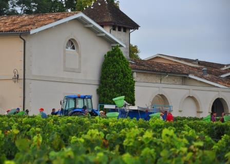 2012 Pichon Lalande Harvest Report A Wine Makers Vintage in Pauillac