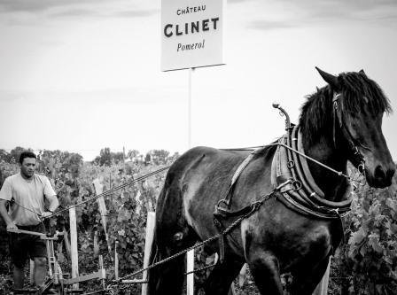 2012 Clinet Ronan Laborde Interview on Pomerol the Vintage and Harvest
