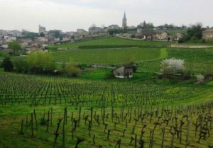 St. Emilion Grand Cru Classe Wines2 300x209 St. Emilion Grand Cru Classe Chateaux Producer Vineyard Guide