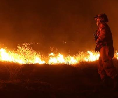 Napa Valley Fire Napa Valley Fires Raging, Governor Declares State of Emergency