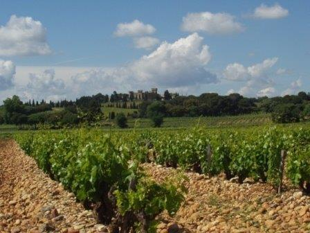 Cotes du Rhone Appellation Cotes du Rhone Appellation Rhone Valley Wine The Complete Guide